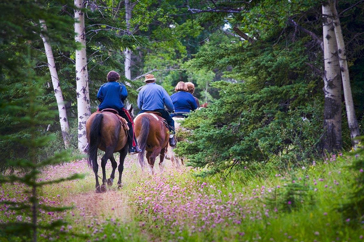 lovaglás Mándok