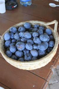 Making plum jam, Faluvégi Guesthouse - Mándok